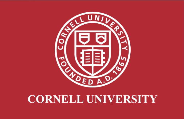 Cornell University Virtual Reality Diversity Inclusion Training